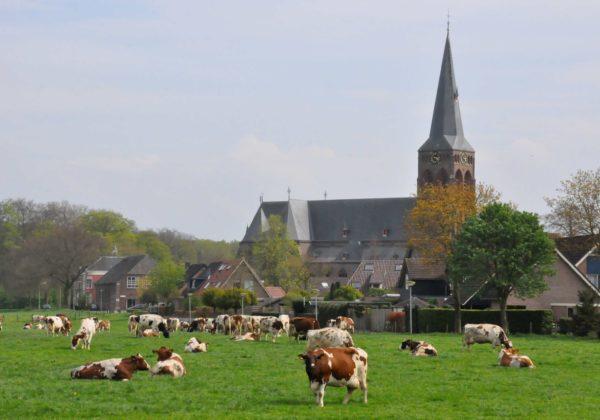 Martinuskerk Baak