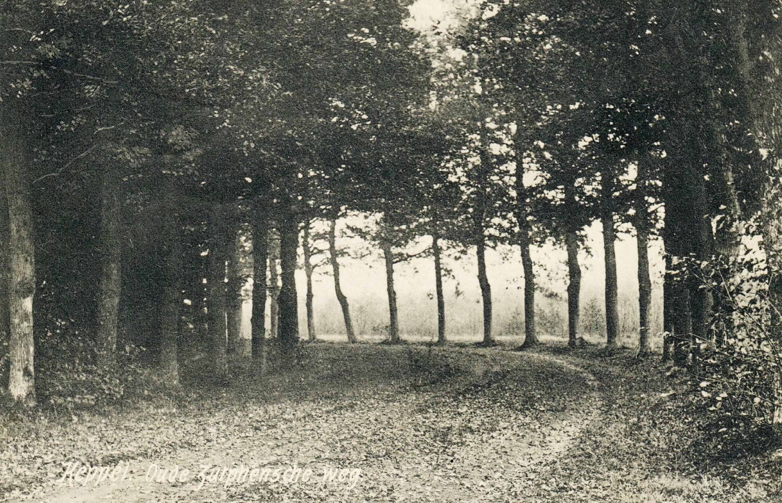 Hoog-Keppel Oude Zutphenseweg